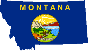state flag outline
