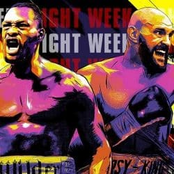 wilder fury rematch